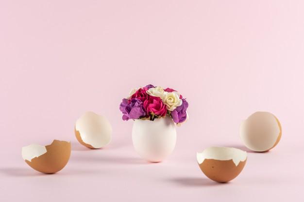 Яичная скорлупа в подкормке